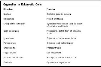 Cell - Biology Encyclopedia - cells, plant, body, function, animal ...