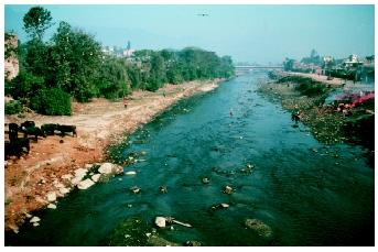 The polluted Swazambhunath River in Kathmandu, Nepal. Sewage, industrial waste, and agricultural runoff can severely damage aquatic communities.