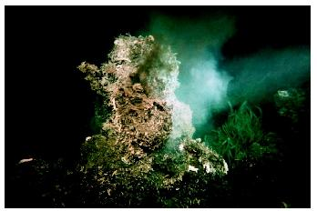A hydrothermal vent on the East Pacific Rise. Life forms ranging from microbes to invertebrates have adapted to the extreme conditions around these underwater geysers.