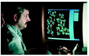 A scientist using a computer to design complex proteins. Proteins are more difficult to manipulate than DNA, and each must be approached individually.