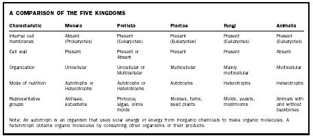 Kingdom - Biology Encyclopedia - cells, plant, body, process, animal ...