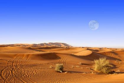 Desert 3918
